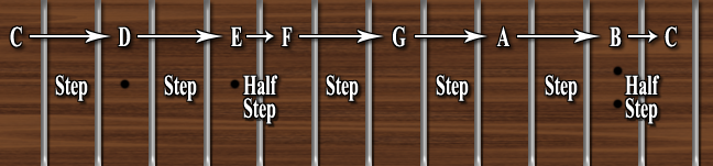 On the guitar fret-board a Whole Step is 2 frets, a Half Step is 1 fret.